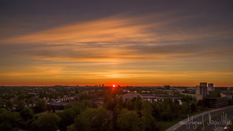 """Tulekera ütleb """"tere"""" ning võtab mõõtu Tallinna kõrghoonetega"""
